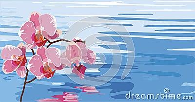 Orchidea riflessa nell 39 acqua illustrazione vettoriale for Orchidea acqua