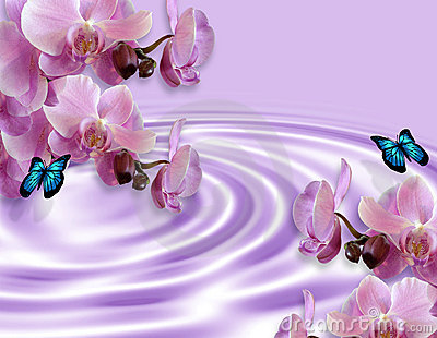Orchids And Butterflies Fantasy Stock Photography - Image: 8378812