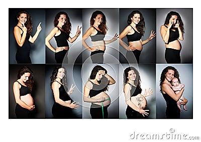 ordnen sie bilder einer frau w hrend aller monate der schwangerschaft der reihe nach stockfoto. Black Bedroom Furniture Sets. Home Design Ideas