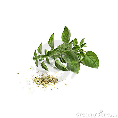 Free Oregano Stock Photography - 7474702