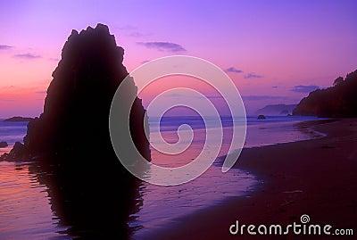 Oregon Coast 02