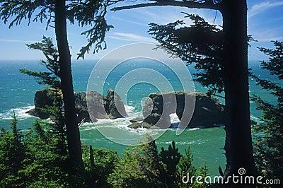 Oregon coast sea arch