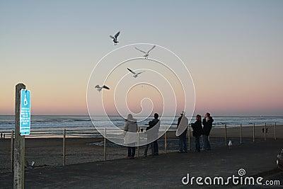 Oregon Coast Tourists