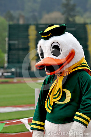 Oregon Duck Editorial Photo