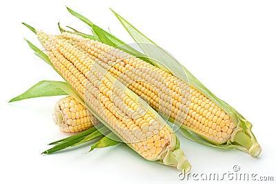 Orelha de milho