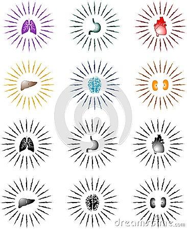 Free Organ Sunburst Royalty Free Stock Photo - 364775