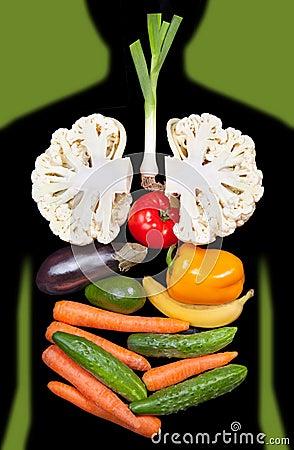 Organes internes humains garnis des légumes