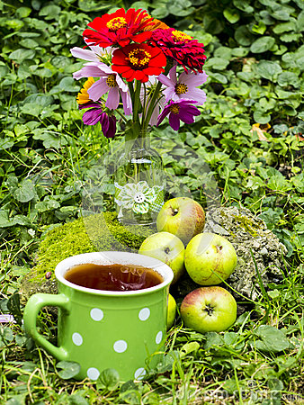 Organic apples and tea