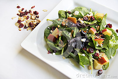Organic baby spring mix salad shot