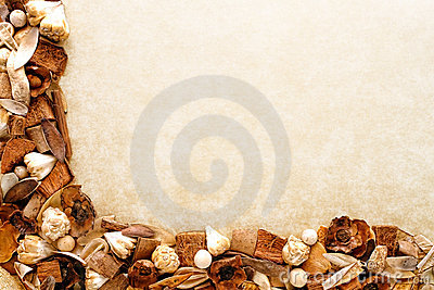 Organic Earth Tone Decoration Potpourri Background