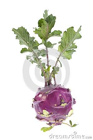 Organic Kohlrabi