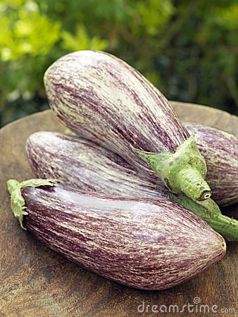 Organic purple and white eggplants