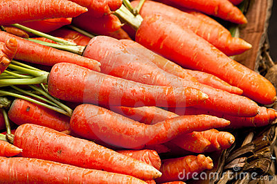 Organic Raw Carrots