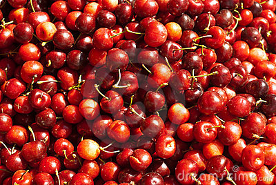 Organic Red Cherries