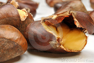organic sweet chestnut and white background