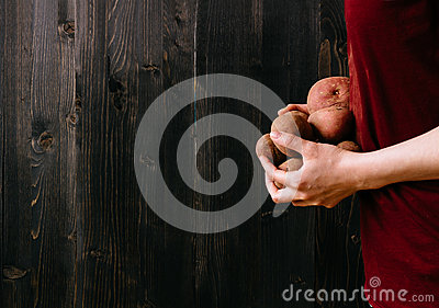 Organic vegetables. Hands holding fresh potatoes. Black wooden background with copy space Stock Photo
