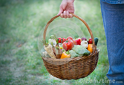Organic vegetables in a wicker basket