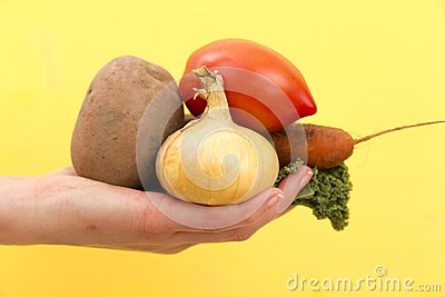 Organic vegetables. Woman`s hands with freshly harvested vegetab Stock Photo