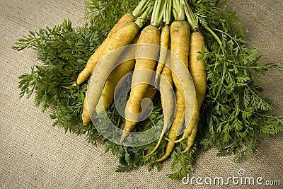 Organic yellow carrots