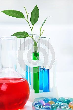 Organicznie chemia
