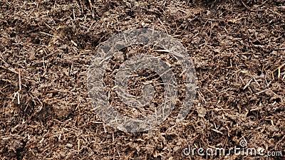 Organisches Düngemittel - Kompost oder Humus Ökologisch reines Düngemittel stock footage