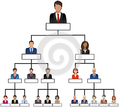 Organization Corporate Chart Company People