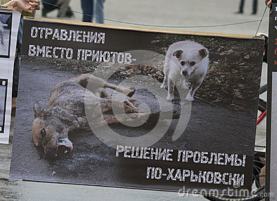 Organized rally protect of animals Editorial Photography
