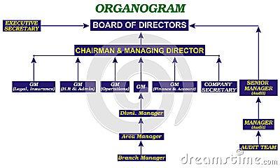 Powerpoint Organogram - Organogram template powerpoint