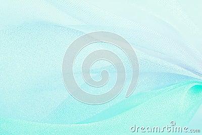 Organza macro blurry
