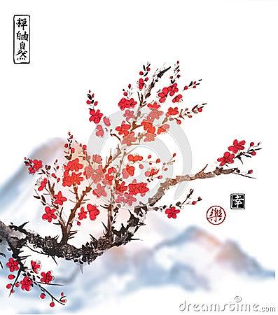 Free Oriental Sakura Cherry Tree In Blossom On White Background. Contains Hieroglyphs - Zen, Freedom, Nature, Joy, Happiness Royalty Free Stock Photo - 91203915