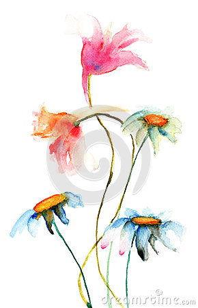 Original flowers illustration