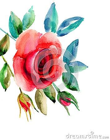 Original Rose flowers illustration