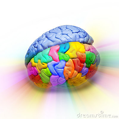 Original Thought Brain Creativity