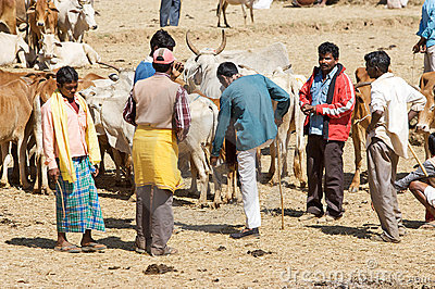 Orissa tribal rural cattle weekly market Editorial Stock Image