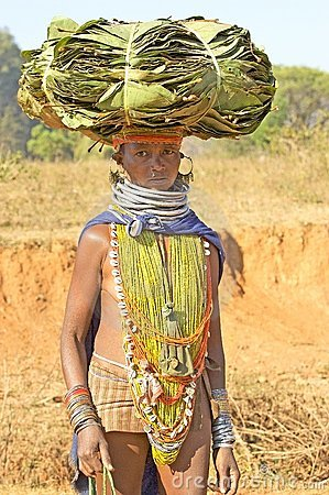 Orissan tribal woman carrying leafs Editorial Photography
