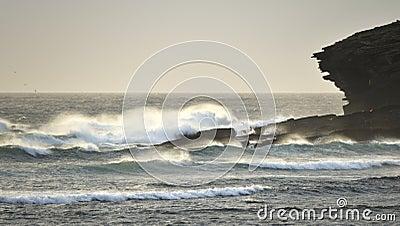 Orkney surf, Marwick head RSPB