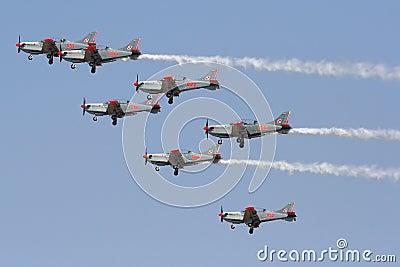 ORLIK Polish Air Display Team