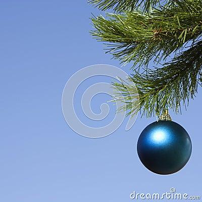 Ornament on tree.