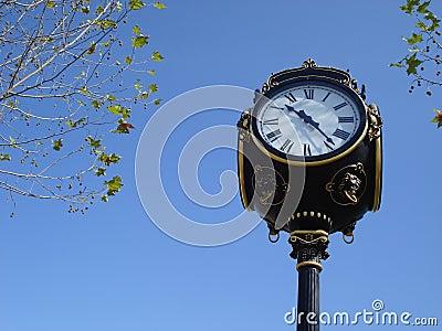 Ornamental city clock