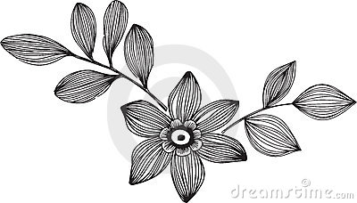Ornamental Flower Vector Illustration