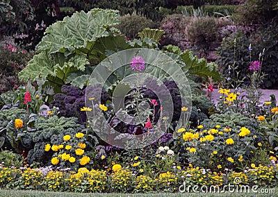 Ornamental flowers garden bed