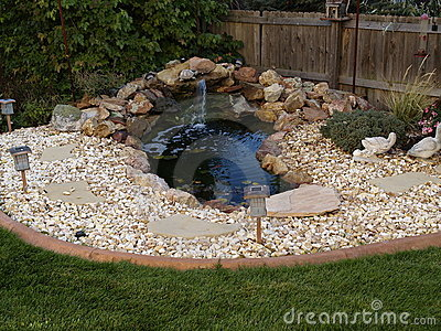 Ornamental pond in garden