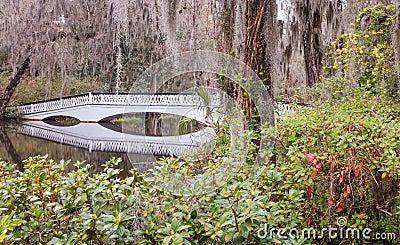 Ornamental Bridge Reflection South Carolina SC