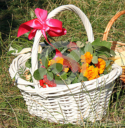 Orthodox basket