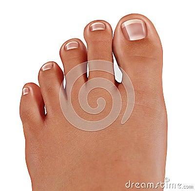 Os dedos do pé saudáveis fecham-se acima