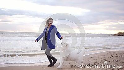 Os jogos atrativos da jovem mulher e afagam seu cão da raça do Samoyed que corre pelo mar Animal de estimação macio branco na pra video estoque
