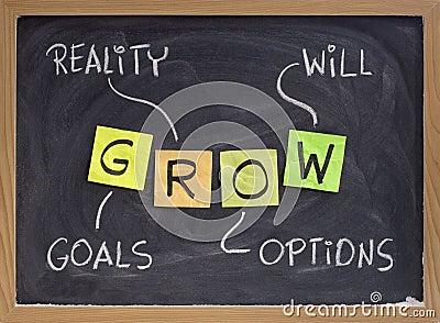 Os objetivos, realidade, opções,
