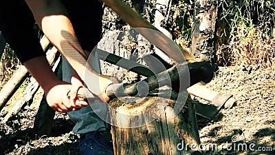 Os povos racharam a madeira na floresta com um machado vídeos de arquivo