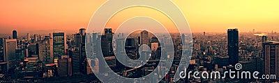 Osaka skyline at sunset
