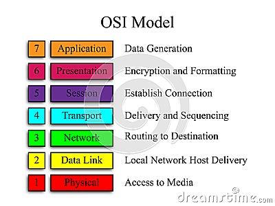 OSI knyter kontakt modellerar